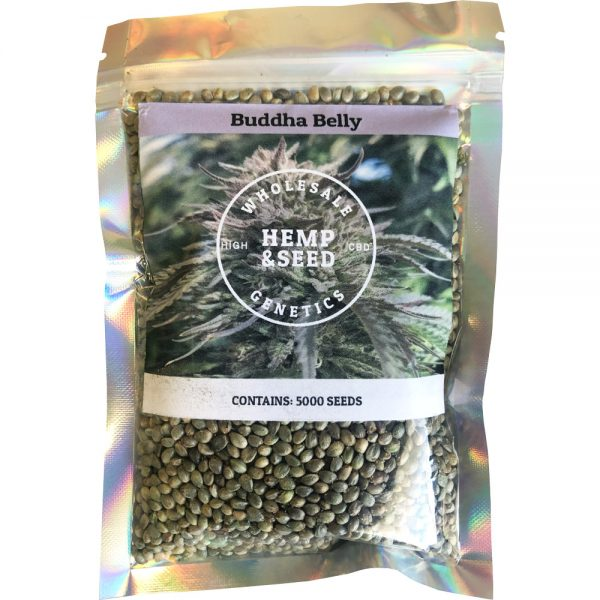 Buddha Belly High CBD Hemp Seeds